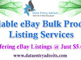 Reliable eBay Bulk Product Listing Services - DataEntryAdroits